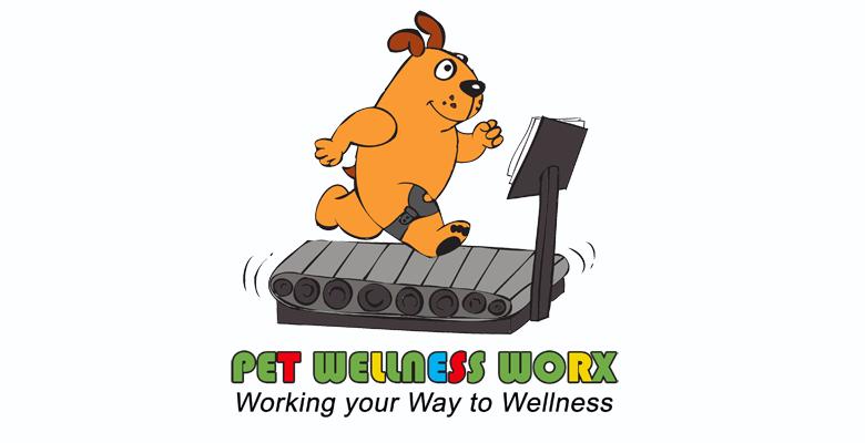 Pet Wellness Worx Rehabilitation South African Pet Services 1